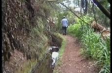 Madeira-2004 - Vimeo thumbnail