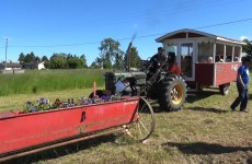 Malax Veterantraktor utställning 2017 - Vimeo thumbnail